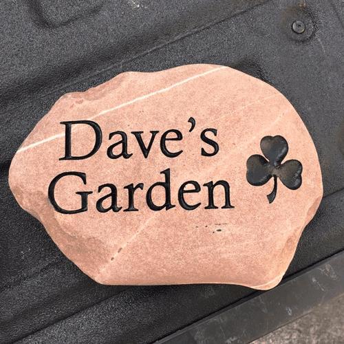 daves-garden (1)